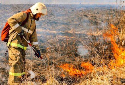 115 пожаров зарегистрировано в Нижегородской области. Видео