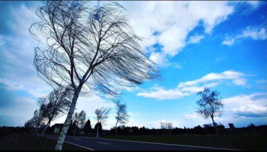 Похолодание и сильный ветер ожидаются в Нижнем Новгороде 17-18 апреля