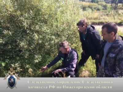 Взяточник отделался штрафом и увольнением: бывший инспектор Охотнадзора выплатит 800 тысяч рублей