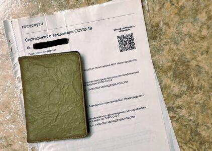 Нижегородцев без QR-кодов не будут пускать в ТЦ, общепиты и салоны красоты
